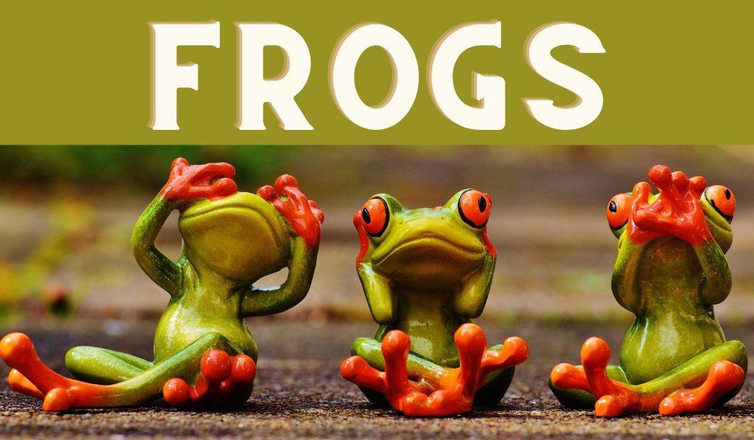 Comment trouver des visiteurs avec la méthode FROGS